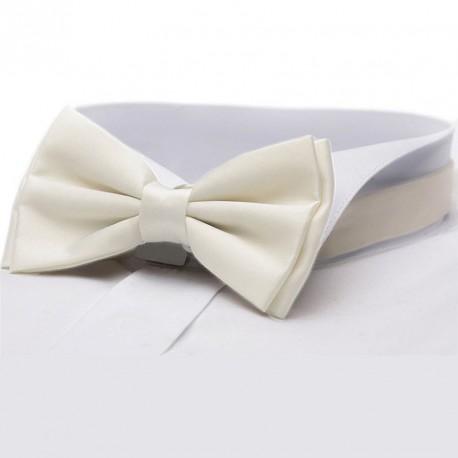 Ekry pánský motýlek v krabičce Assante 90316