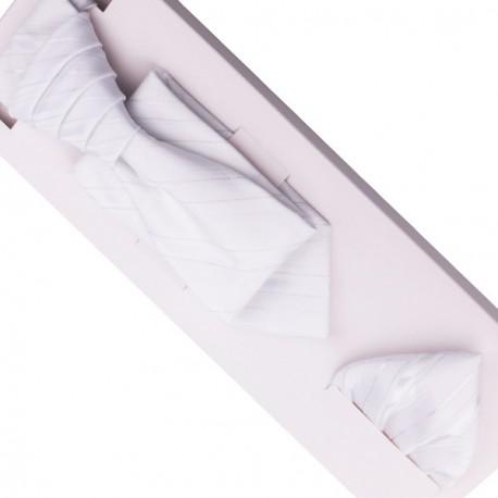 Svatební regata stříbrná - Anglická kravata Assante 90684