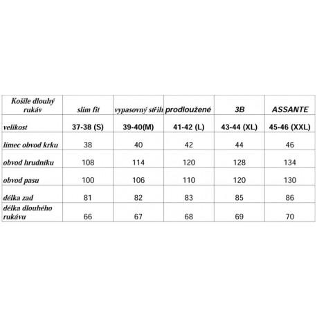 Pánská zimní bekovka šedá s naušníky Assante 85232